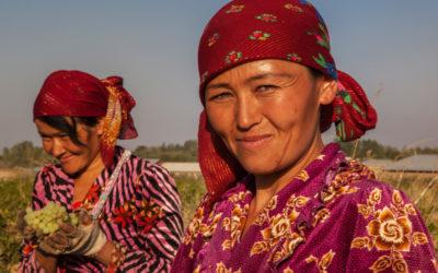 Ouzbékistan, la turquoise des steppes