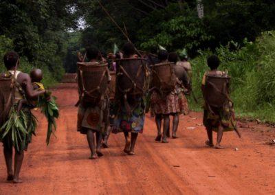 Congo, Terre des Pygmées